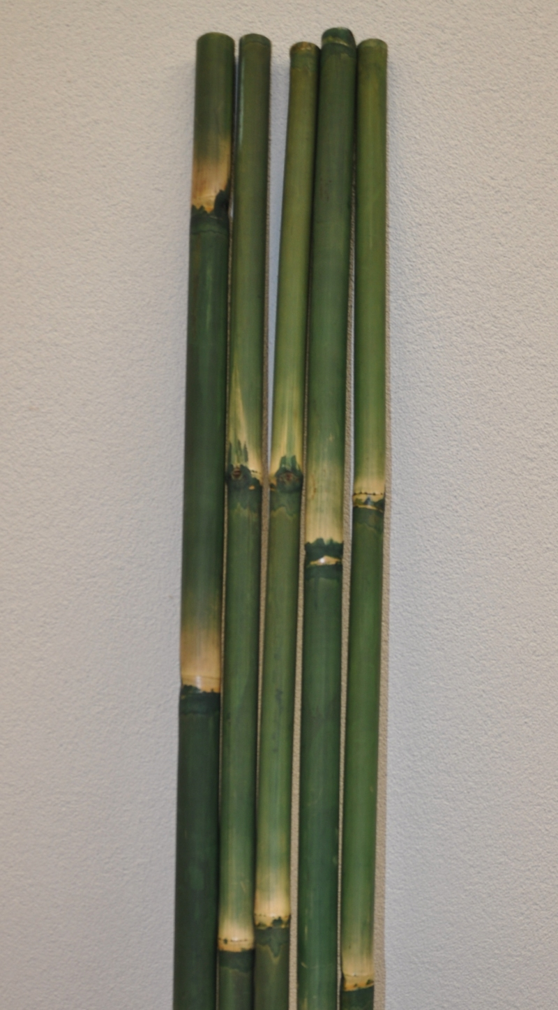 Bambusová tyč 3 - 4 cm, délka 2 metry - barvená zelená