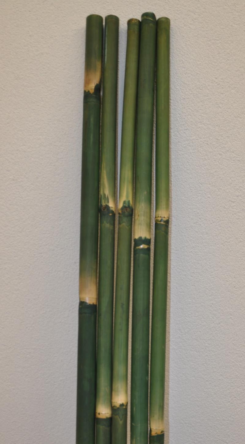 Bambusová tyč 5 - 6 cm, délka 2 metry - barvená zelená